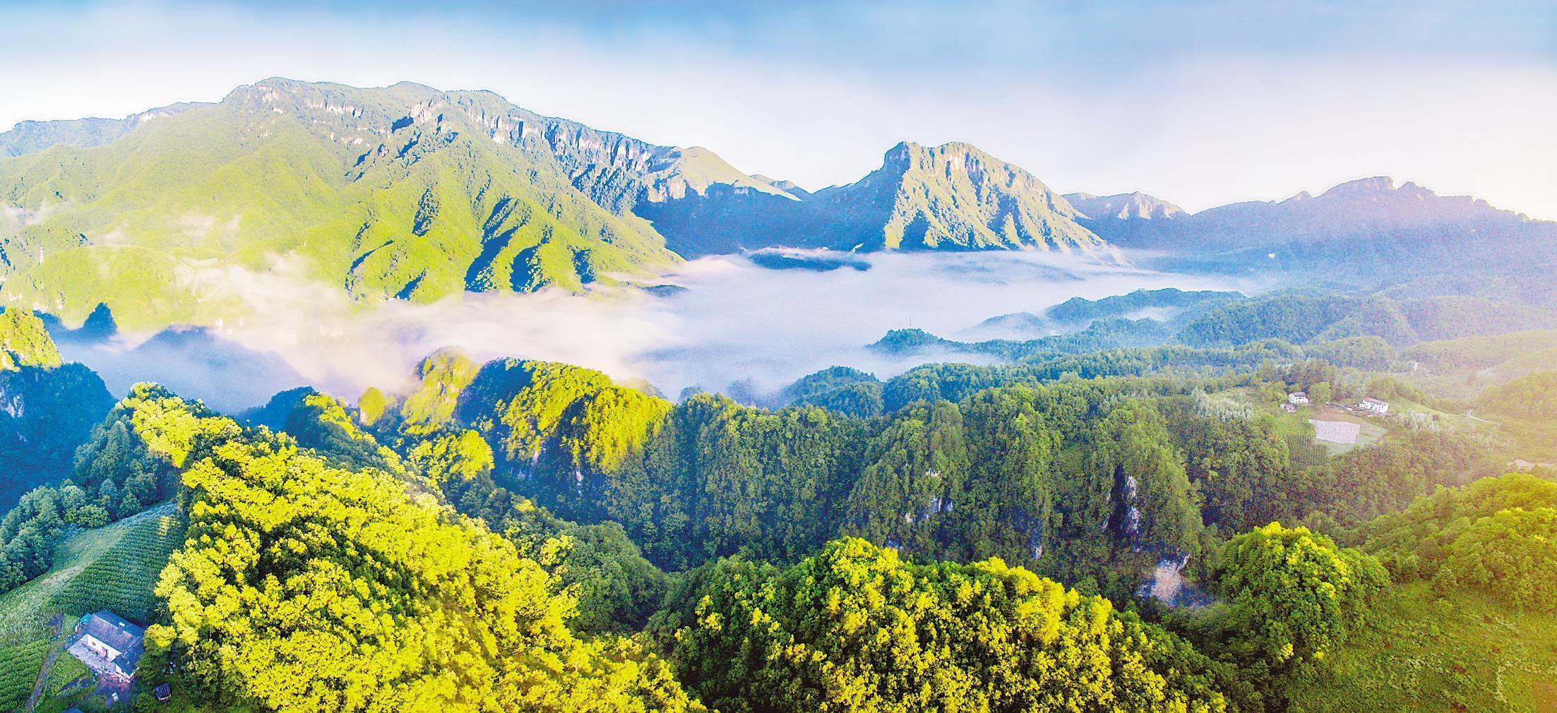 神农架生态系统生产总值超800亿元